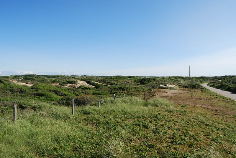 And a beautiful nature area for hiking from Noordwijk to Zandvoort