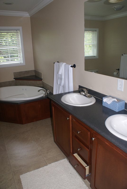 Large master bath with jetted tub and shower