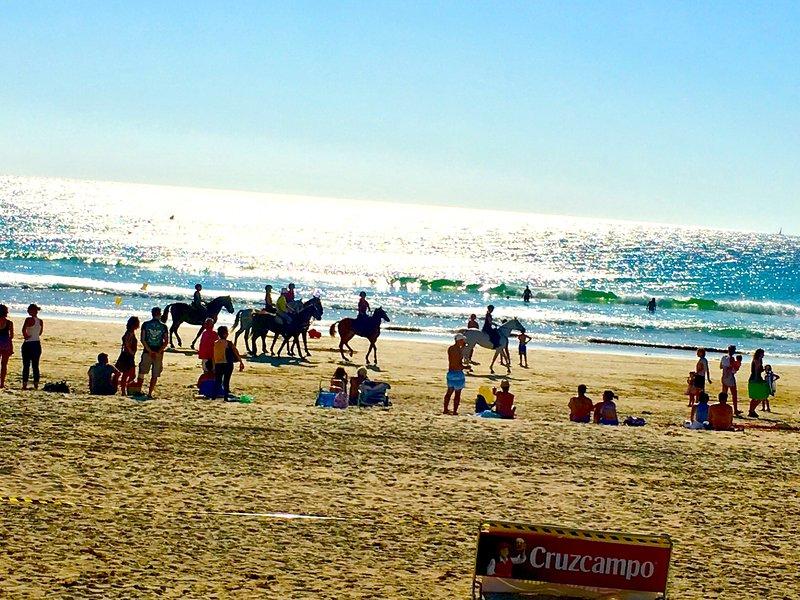 Horse races on Zahara beach late September