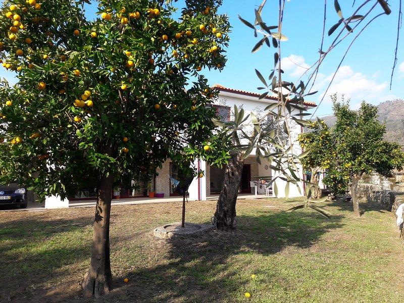 Casa de férias -BOURO STA.MARTA-GERÊS, vacation rental in Campo de Geres