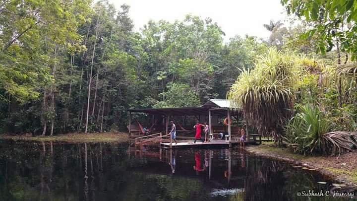 Rustic Cabin on Retreat, holiday rental in Georgetown