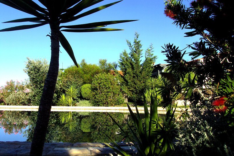 View from the private poolside terrace towards the accommodations