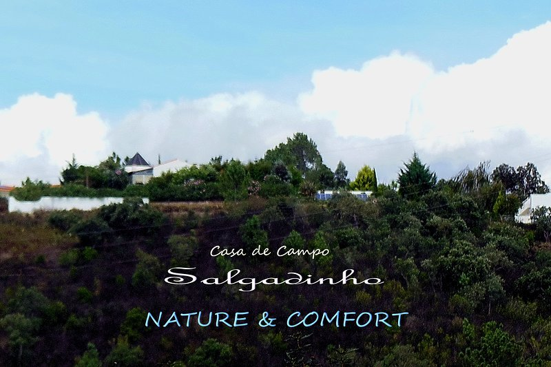 SALGADINHO - Exclusive country house complex embedded in plain nature