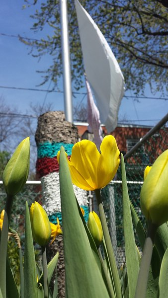 tiempo de primavera patio trasero