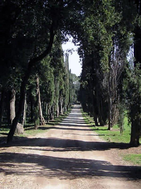 Parque natural Zlatni Rt - área local