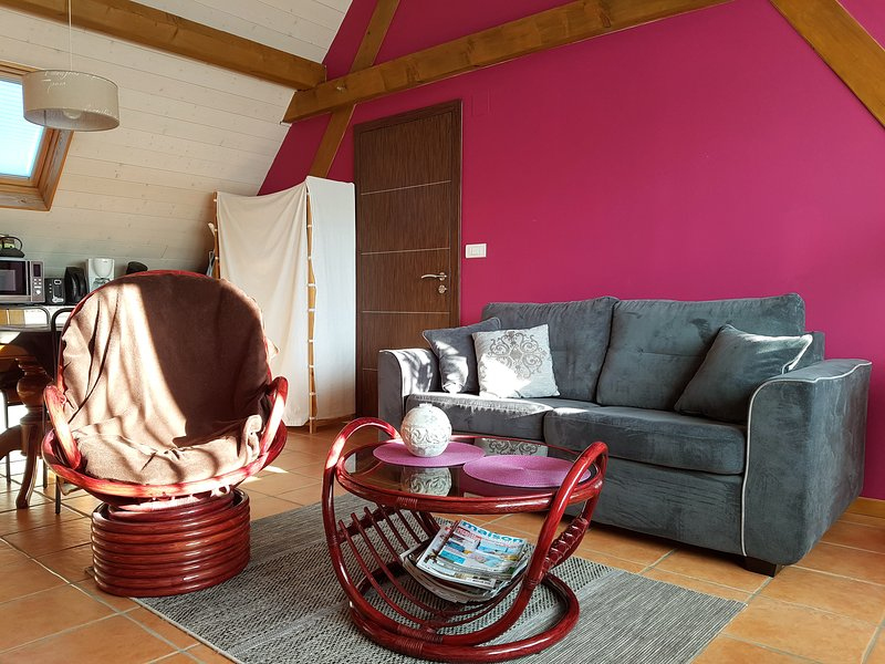L'appartement en chambre d'hote ou gite classé 2** à 20 min d'Europa Park, holiday rental in Neuf-Brisach