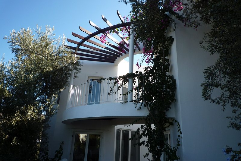 Beautiful villa with panorama roof terrasse, very nice pool area 6 or 10 persons, vacation rental in Yalikavak