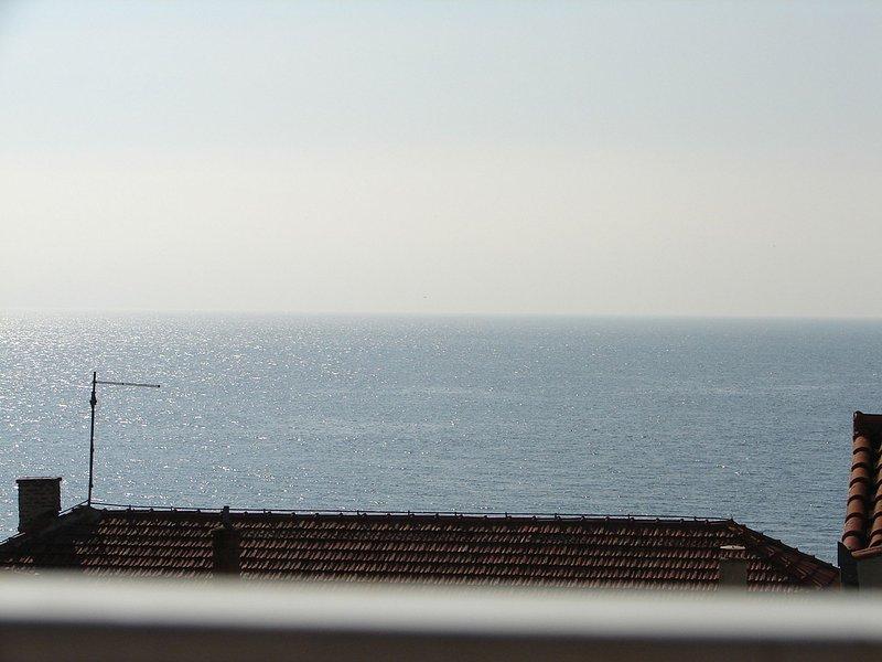 Nik - 50 M from the sea : A2(2) - Gradac, location de vacances à Gradac