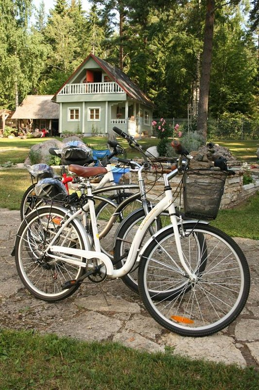 Nice cottage for family vacation near by sea at forest. Bicycles for rent with safety vests.