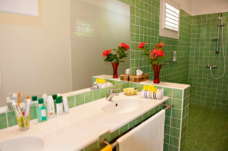 large walk-in shower, double sinks, separate toilet. Comfort.