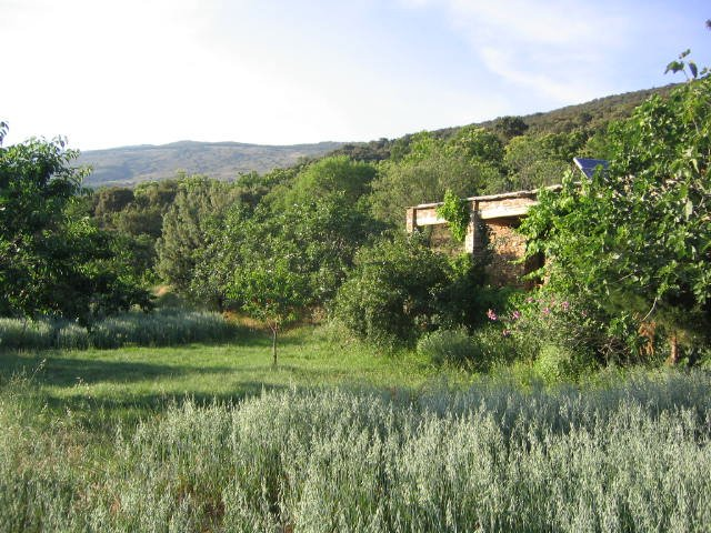 Cortijo secluded in 5 acres of land