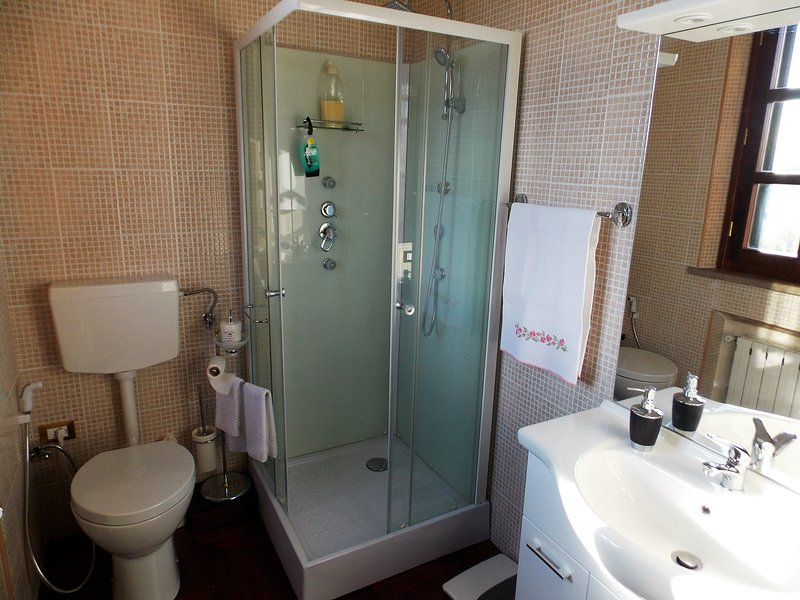 Bathroom with toilet,bidet,shower and sink.Towels ,shampoo are provided