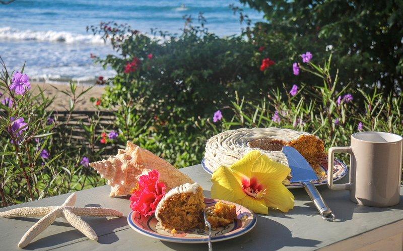 Afternoon tea on the 'secret veranda', with freshly-baked carrot cake.