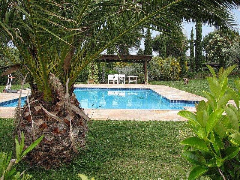 Exclusive villa with pool 8 guests, aluguéis de temporada em Cecina