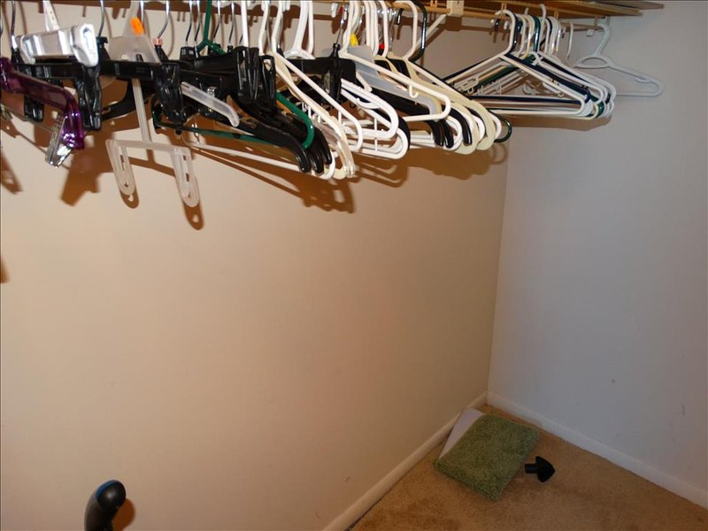 MASSIVE walk in closet, and PLENTY of hangars for your use!
