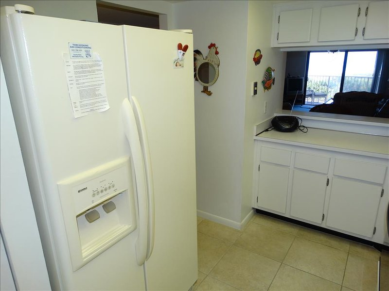What a fantastic Fridge and Freezer!  Get your water and Ice right at the Door!