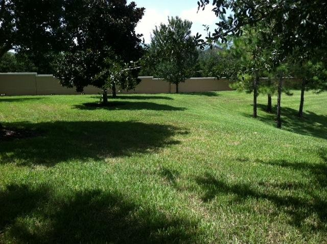 Look at the SIDE YARD Next to your unit!  Kids can play here!