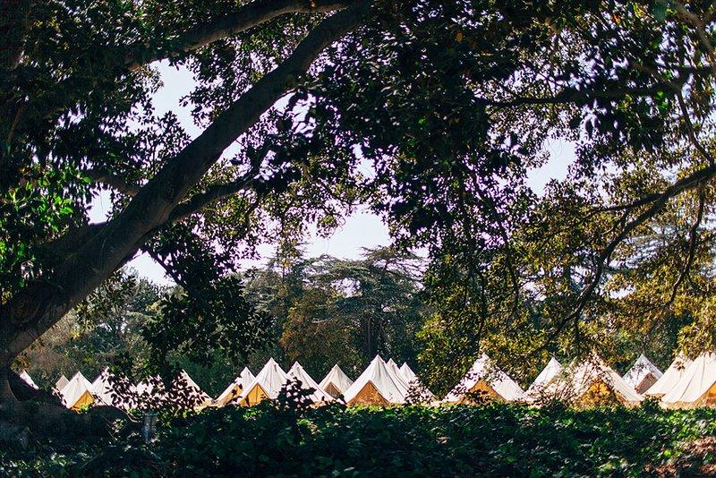 Hochzeit Zelte