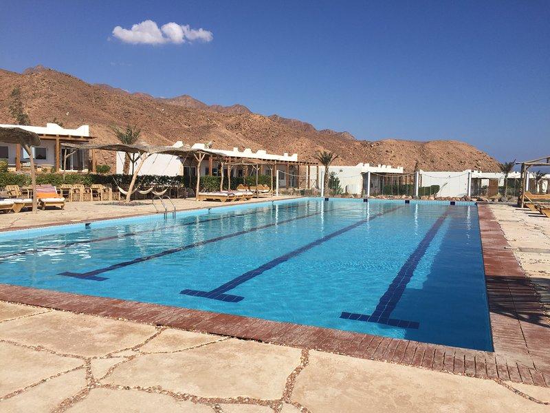 Favoloso appartamento con letto situato sulla spiaggia di Blue Hole Road, piscina di 25 metri! Cosa si può volere di più!