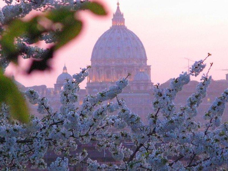 Basilica San Pietro in spring at sunset