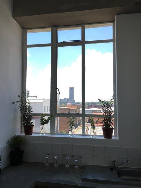 Cuisine: Oui, vous pouvez profiter d'une belle vue sur le panorama de la ville pendant que vous préparez un repas