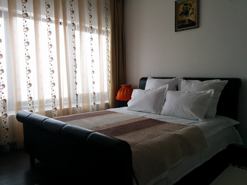 Calea Poienii Penthouse, Classic Double Room, holiday rental in Cristian