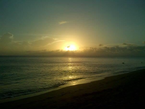 madrugadores pode ver o nascer do sol, os primeiros corredores pode até ver golfinhos e peixes-boi.