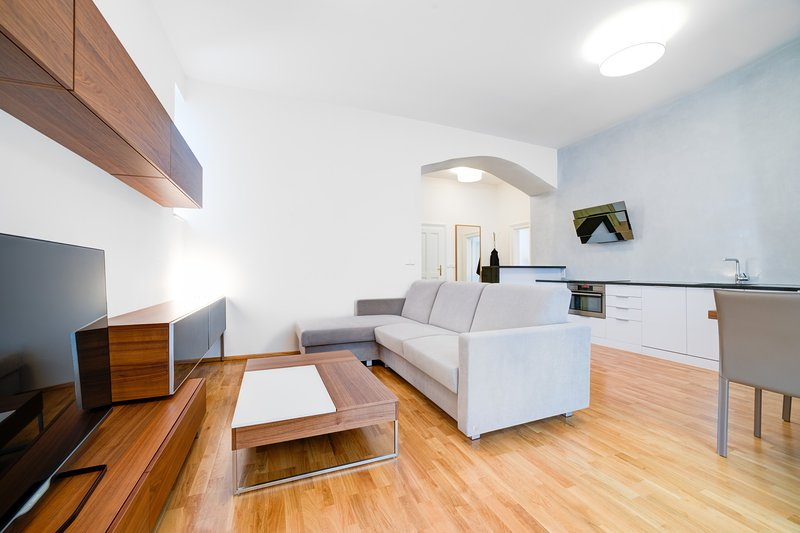 Bishop Haas Apartment with a terrace seating, holiday rental in Brno