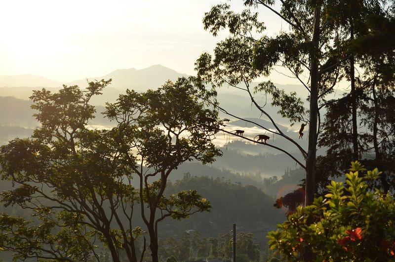 Glenesk Bungalow, vakantiewoning in Belihuloya