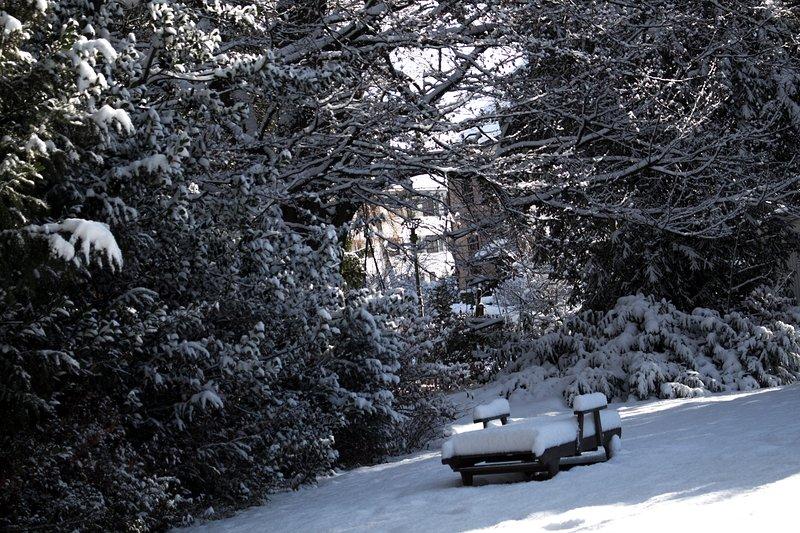 Tuin in de winter kleding