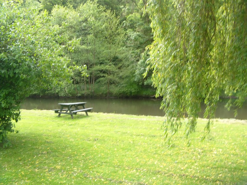 Place for river, fish and wildlife watching, with a glass of wine!