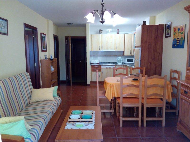 Salón comedor-Cocina-Entrada