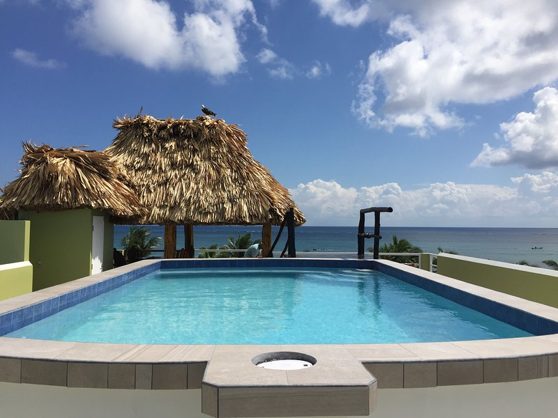 Roof top pool with 360 degree view of the Island and Caribbean Sea