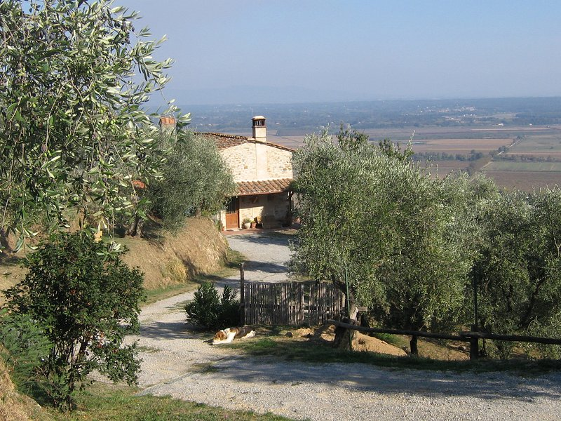Podere Zaira, holiday rental in Galleno