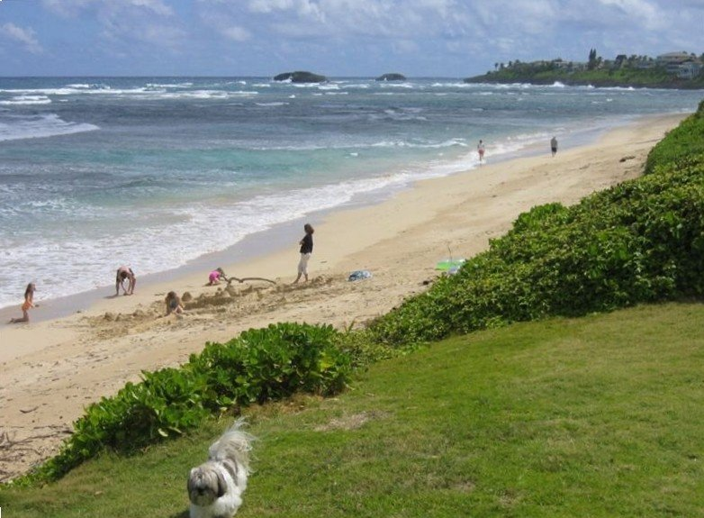 The right side view of Hukilau Beach from the property