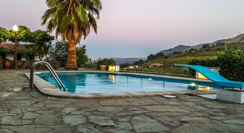 Quinta da Padrela Winery House, holiday rental in Penedono