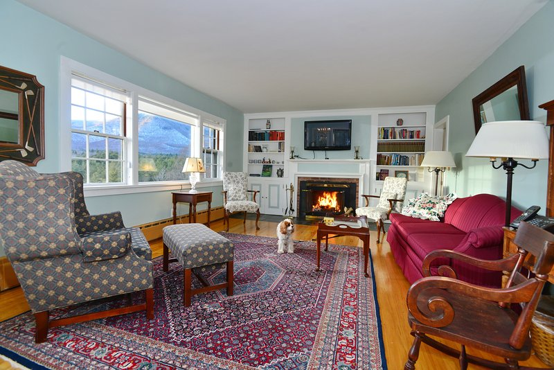 pet friendly living room with wood burning fireplace and gorgeous mt views!