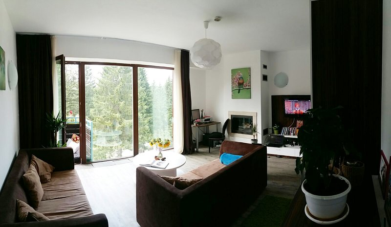 Open living room with 180 degrees panoramic forest view, 2 sofas, fireplace, plasma TV and work desk