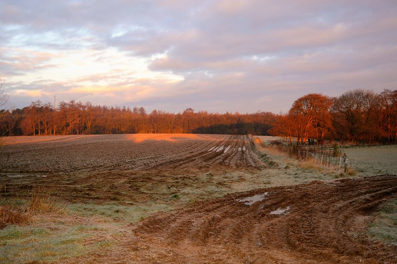 Winter is just as lovely as the summer. Frozen fields on the road to nearby Yearsley.