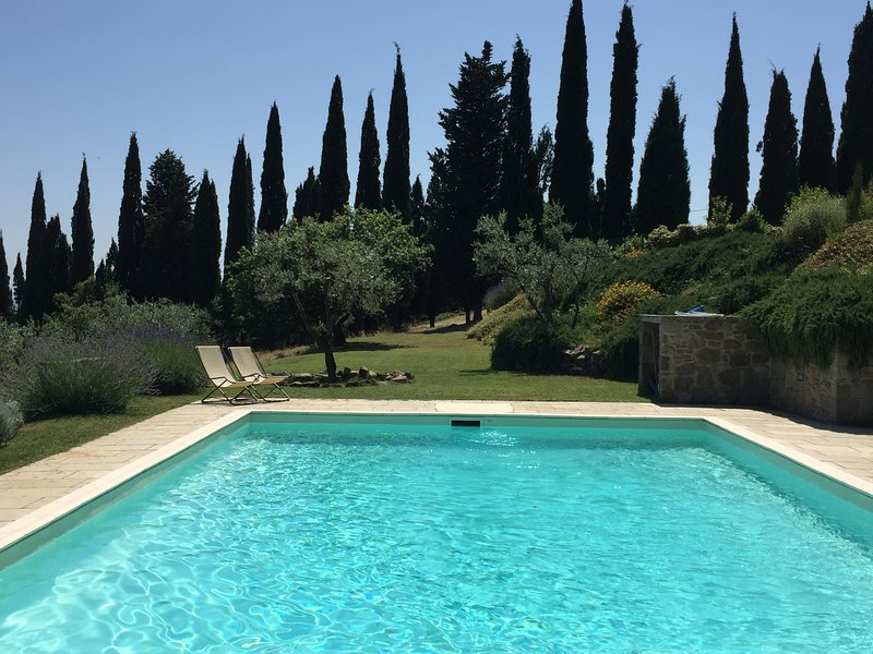 view of the pool with cypress and olive trees in the background