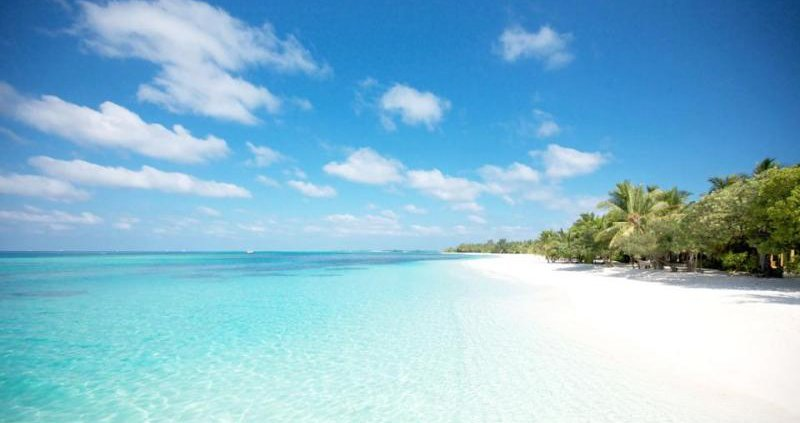 At the edge of the Indian Ocean, on the Ile aux Cerfs, here is the private beach Anahita