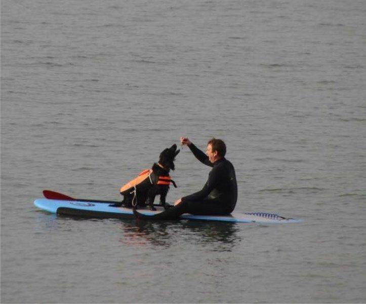 SUP es un pasatiempo popular, incluso su perro puede unirse. Equipo y matrícula están disponibles en W Ho!