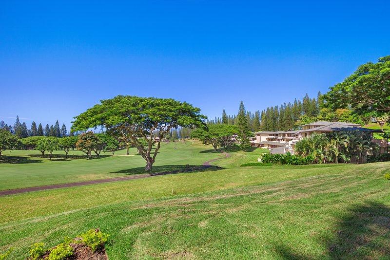 Stunning Villa in Paradise!!, holiday rental in Kapalua
