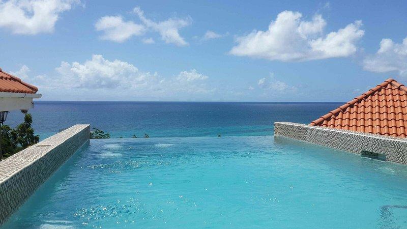 Infinity-Pool mit Blick auf Karibik