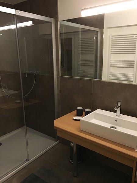 Salle de bains en bas avec une grande douche et des toilettes séparées