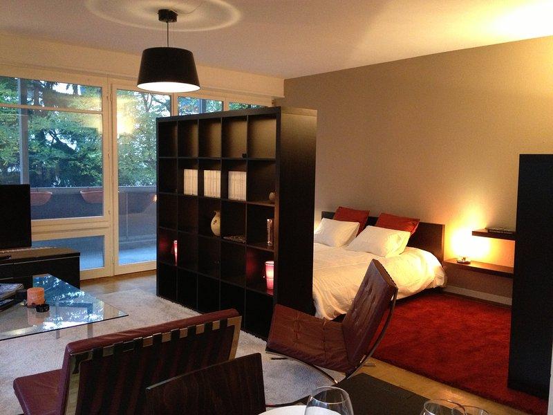 Appartement de 2 pièces d'angle plein de charme et lumineux, holiday rental in Carouge