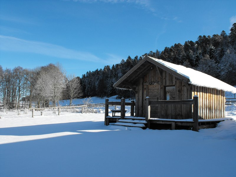 CHALETS NATURE VERCORS, vacation rental in Chamaloc