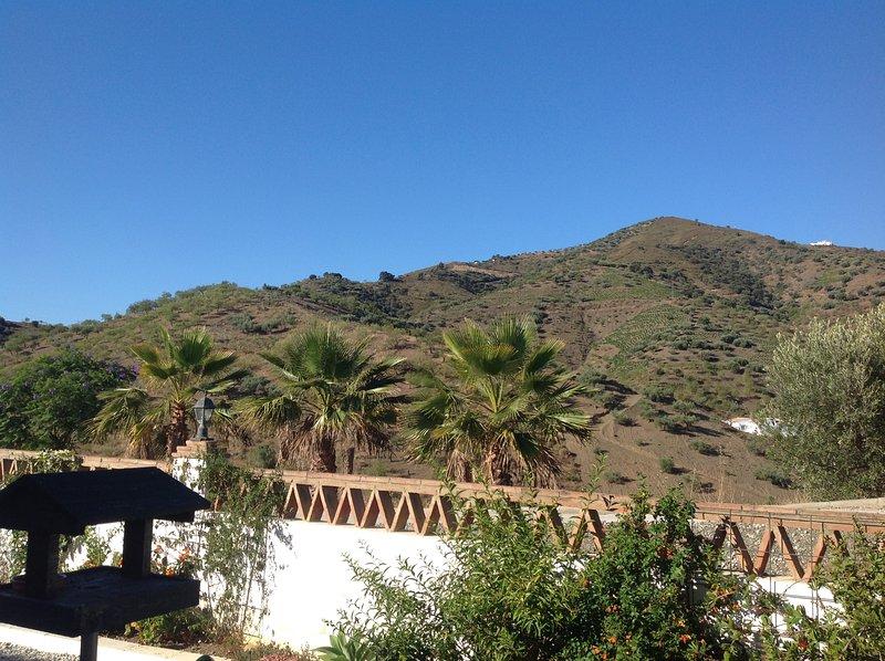 Vista de las montañas del jardín delantero