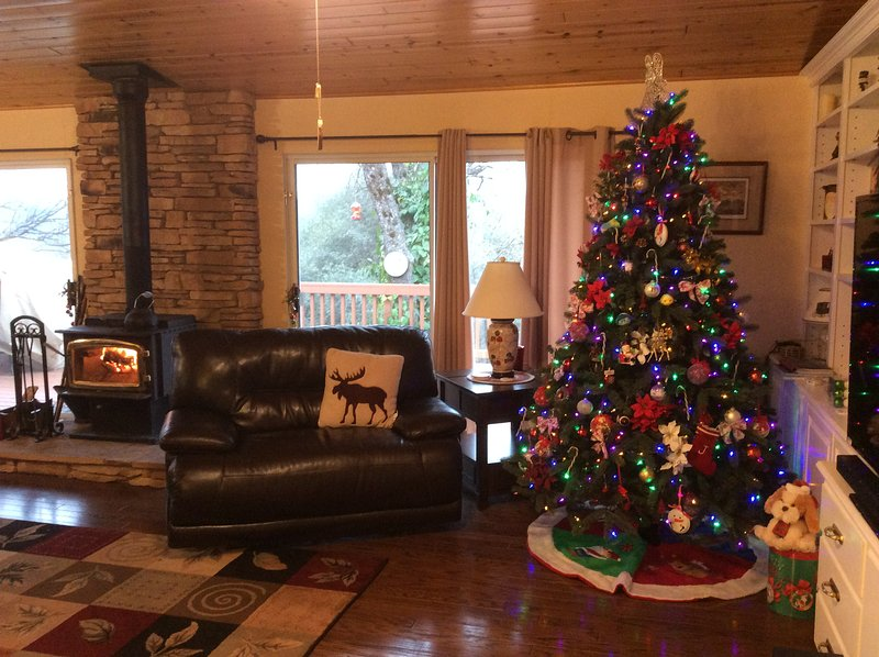 Home for the holidays!