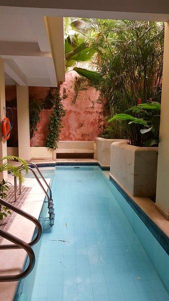 Pool / Piscina